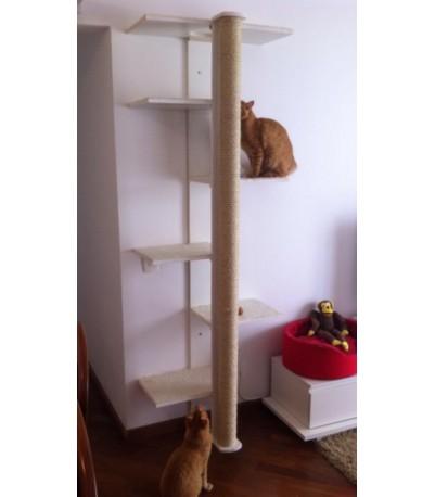 Torre Escada